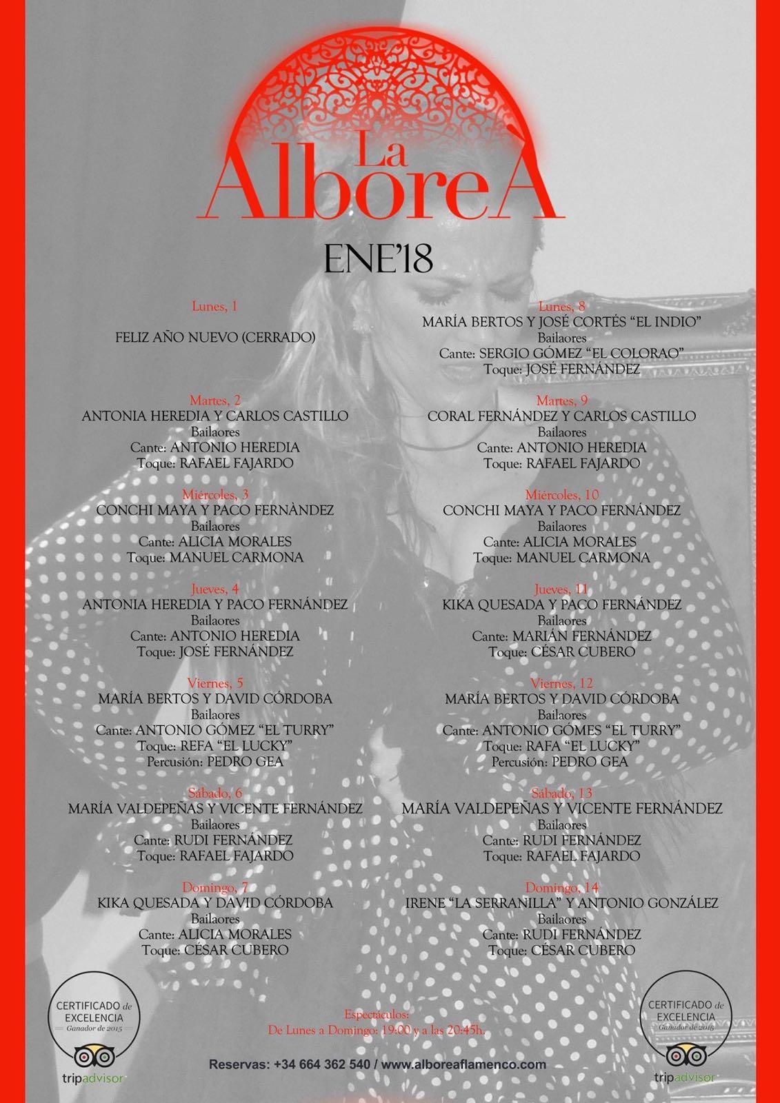 Flamenco en Granada Enero 2018 - Programación artistas